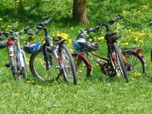 bicycles-6895_640